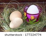 easter eggs in nest on rustic... | Shutterstock . vector #177224774