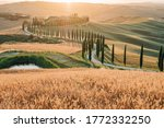 Val D\'orcia  Italy   20 June ...