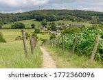 Summer Landscape Of Hilly...