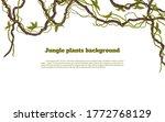 jungle plants background.... | Shutterstock .eps vector #1772768129