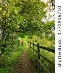 A Wooden Fence Runs Along A...