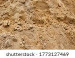 Sand Texture From Sand Pile...