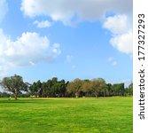 tel aviv city public park...   Shutterstock . vector #177327293