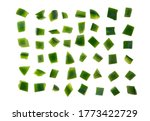 A Pieces Of Chopped Green Bell...
