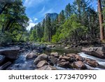 River Rock In Green Forest At...