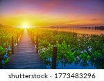 Wooden walkway at Sunrise.Beautiful sunset.Beautiful sunrise.Light at the destination.