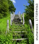 Old Wooden Stairs In Nature...