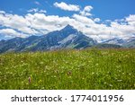 View Of The Piz Beverin In The...