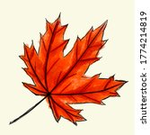 Digital Sketch Maple Leaf....