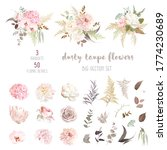 dusty pink and ivory beige rose ... | Shutterstock .eps vector #1774230689