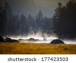 Sunset In Yellowstone National...