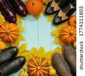 Autumn Shoes. Autumn Discounts ...