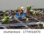 Miniture people cyclist and miniture gardeners with planting tree background.