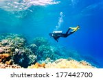 Female Scuba Diver Swimming...