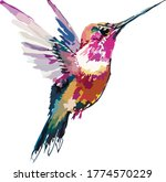 Image Of An Exotic Birdie In...