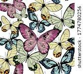 multicolored butterflies ... | Shutterstock .eps vector #1774780256