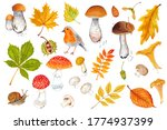 Watercolor Autumn Set With...