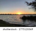 Sunset At Lake Monger Wembley...