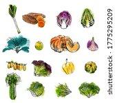 watercolor vector illustration... | Shutterstock .eps vector #1775295209