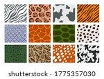 vector illustration set of... | Shutterstock .eps vector #1775357030