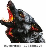 Wolf Drawing Vector Color...