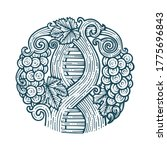 grape and vine. wine making...   Shutterstock .eps vector #1775696843