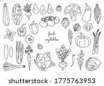 set of outline vegetables on... | Shutterstock .eps vector #1775763953