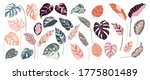 tropical leaves and abstract... | Shutterstock .eps vector #1775801489