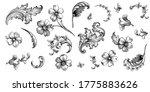 Vintage Spring Flower Summer...