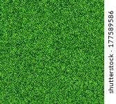 idyllic  seamless grass texture | Shutterstock . vector #177589586