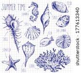 Hand Drawn Shells And Fish