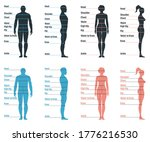 male and female size chart... | Shutterstock .eps vector #1776216530