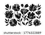 spring flowers hand drawn... | Shutterstock .eps vector #1776322889