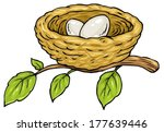 nest with two eggs   cartoon... | Shutterstock .eps vector #177639446