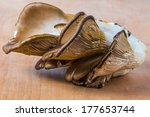 Small photo of Delicious Pleurotus Agaricales Mushrooms on wooden background