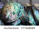 Paua Shells On Display In The...