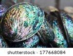 Paua Shells On Display In The...