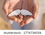 White Gypsum Wings In The Hands ...