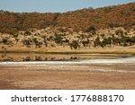 Salt   Mineral Lake At The...