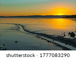 Low Tide Mudflats With Small...