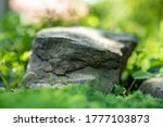 Large Stone Lying On The Green...