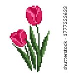 tulip flower cross stitch...