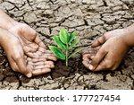 hands growing a tree on crack... | Shutterstock . vector #177727454
