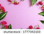 Pink Spray Carnation Flowers O...