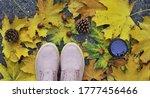 Autumn Background. Shoes ...