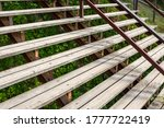 Stairs With Wooden Steps In Th...