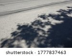 Shadow On Road From The Tree...