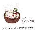 korean traditional summer food...   Shutterstock .eps vector #1777969676