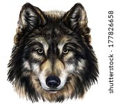 Wolf Head Digital Painting ...