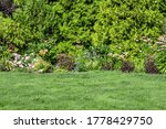 Landscaping of the backyard of a private house. Mowed lawn, decorative trees, flower beds.